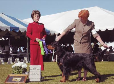 Winners Dog GSCA Specialty Paln Springs Jan 09